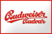 Budvar - General partner 2013